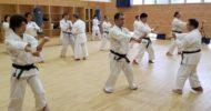 【Report】Goju-ryu training for Shito-ryu practitioners by Gima sensei and Kinjo sensei