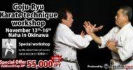 Workshop|Eiichi Miyazato Karate technique workshop produced by Ageshio Japan